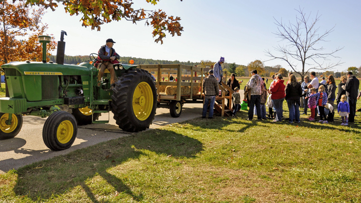 Hayrides are a popular feature at the MacKenzie Fall Festival.