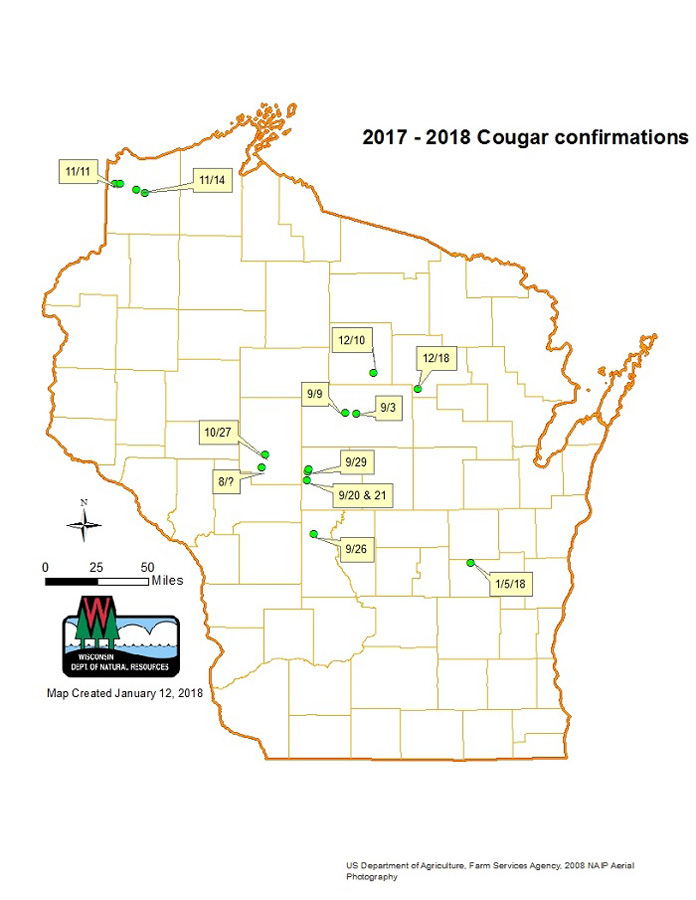 Confirmed cougar sightings August 2017-January 2018 - Photo credit: DNR