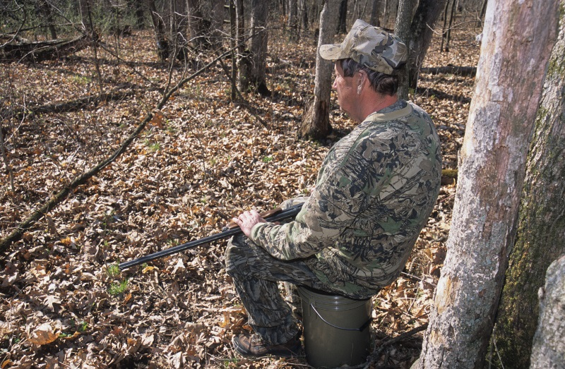 There are 106,078 turkey bonus harvest authorizations for sale for the spring season that opens April 18. - Photo credit: DNR